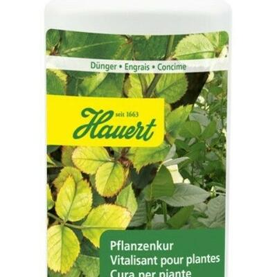 Pflanzenkur